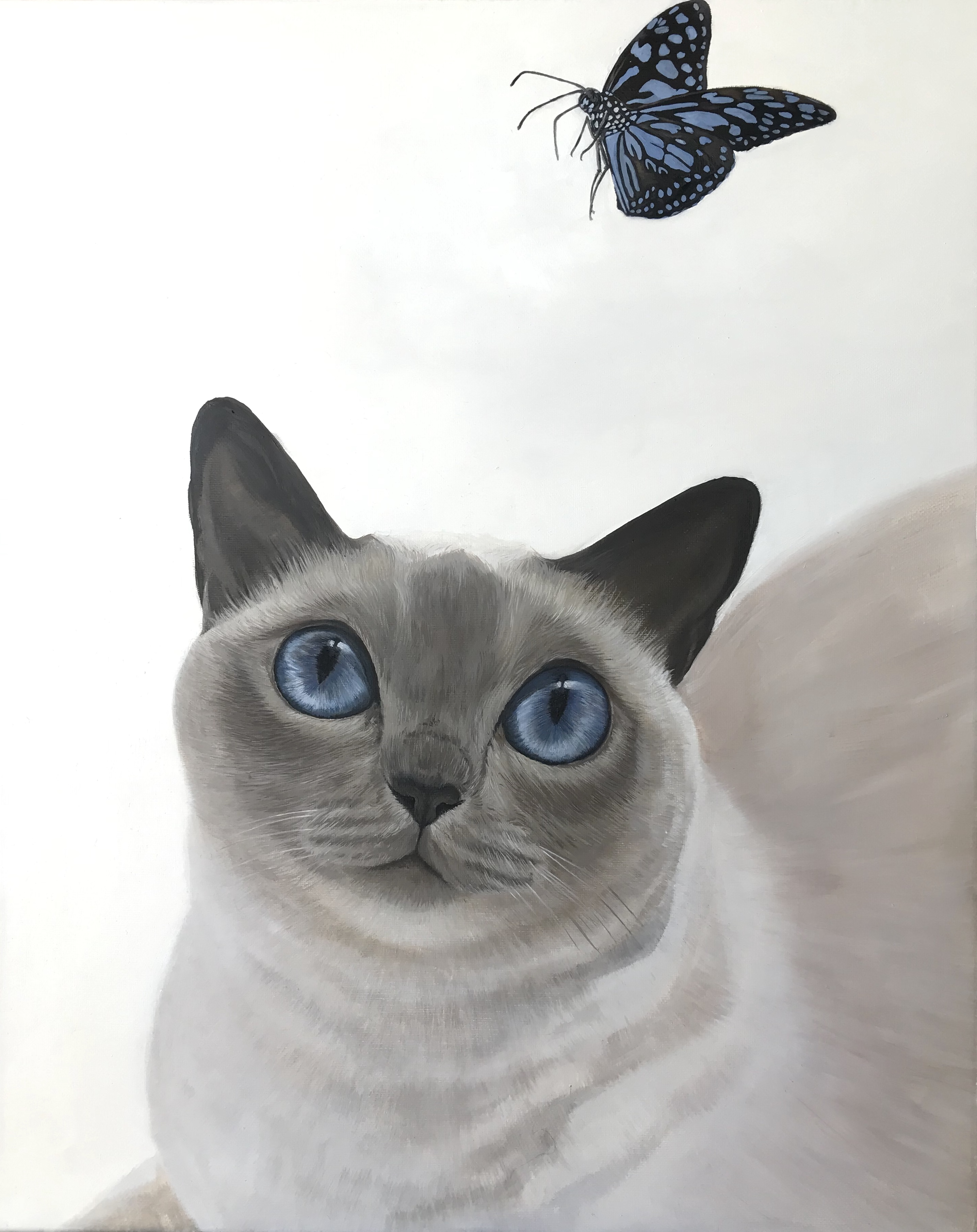 "16"" x 20"" Siamese Cat Oil"