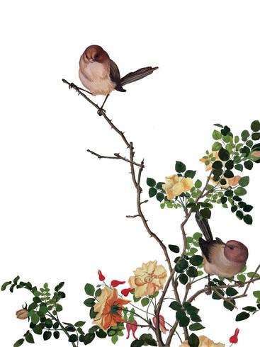 Birds on a Twig - Watercolor