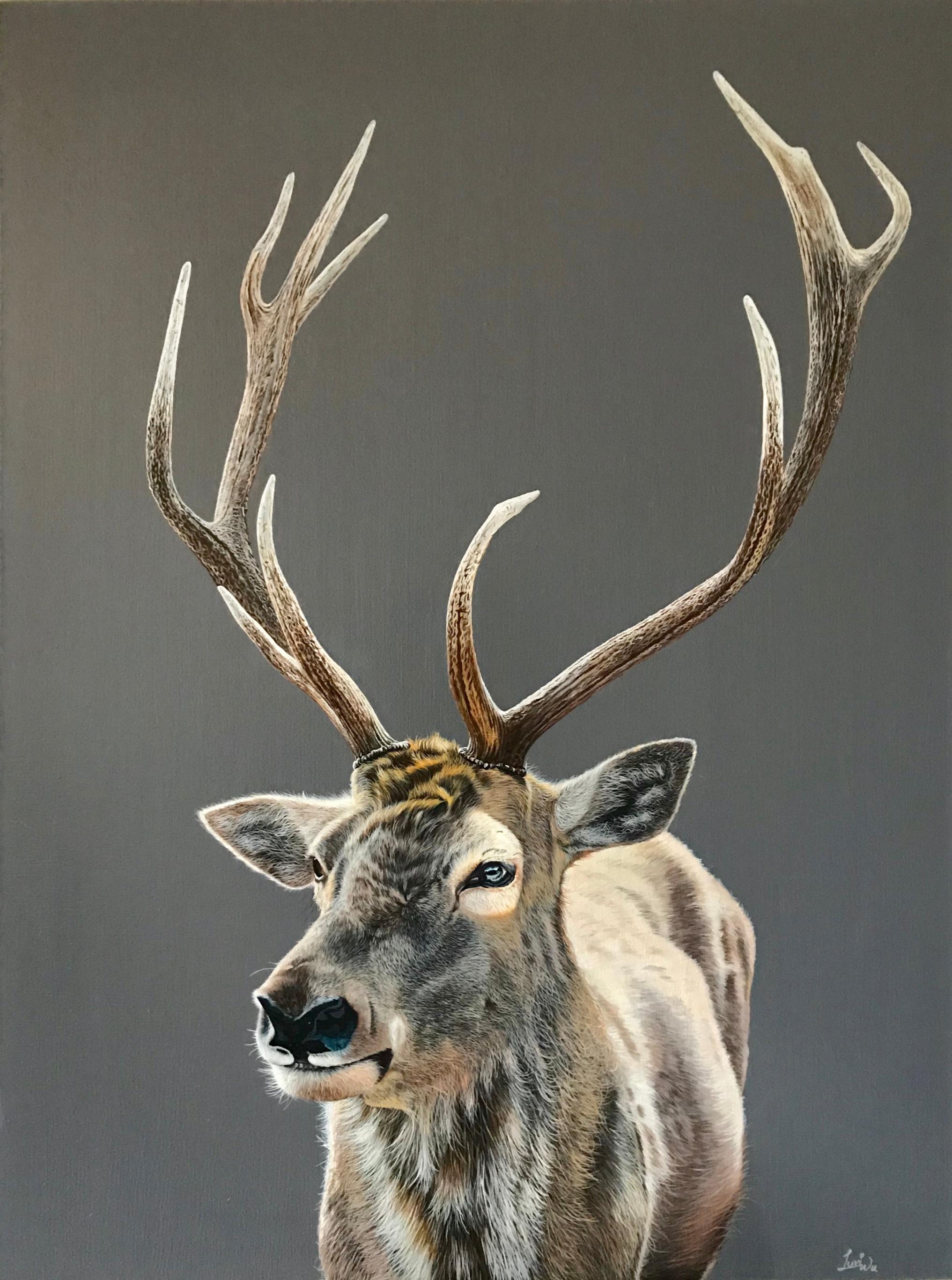 """Deer 30"""" x 40"""" Acrylic - Available"""