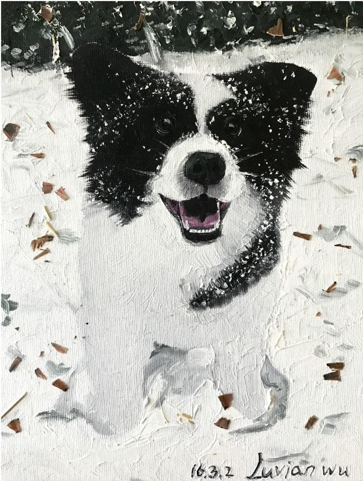 Panda 7'' x 10'' Oil
