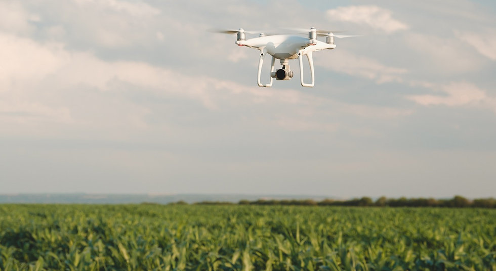 drstone-agriculture-drone2_edited.jpg