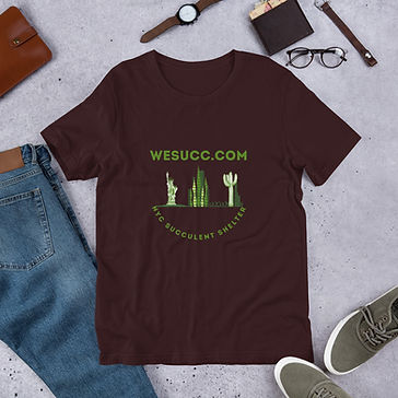 unisex-premium-t-shirt-oxblood-black-fro