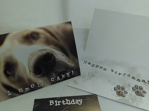 Greeting Card - Birthday - I smell cake!