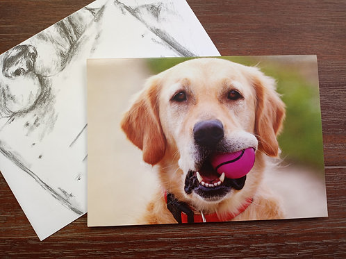 Greeting Card - Happy Birthday from the Dog