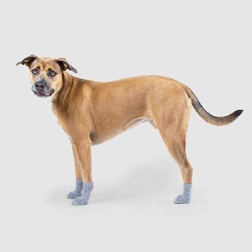 Canada Pooch Dog Socks