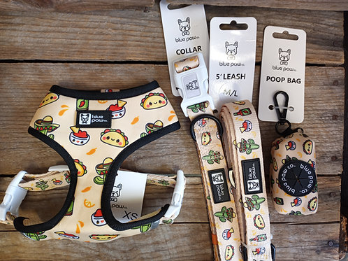 Blue Paw Taco Fiesta Collection