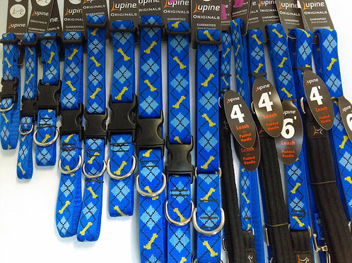 Lupine Collars and Leashes Dapper Dog