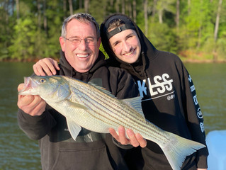 The North Georgia lakes and rivers are producing great results!  Call 770-580-0478 for booking!