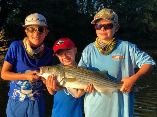 Lake Allatoona fishing gude.
