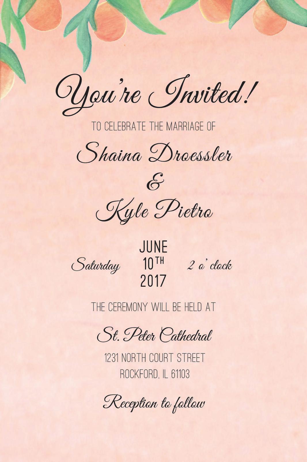 Designer   Shaina Droessler