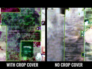 Using Satellite Imagery to Monitor Regenerative Agricultural Practices