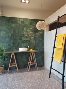 EQU064_bathroom1__Artisan Moss Green Glo
