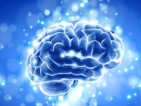 2 Brain Food Tips to Boost Your Leadership Genius