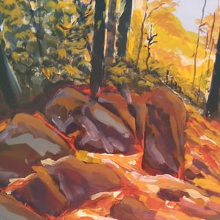 Whiskey Creek Trail – Algonquin Park