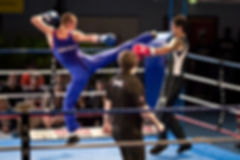 Федерация французского бокса сават России