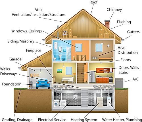 house-illustration_orig.png