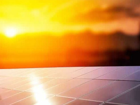 Consciência sustentável cresce no Brasil e no mundo