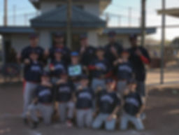Baseball team champions photo