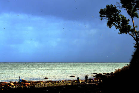 Fehmarn-Ostküste