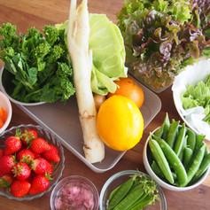 2020.2月野菜たっぷりおもてなしごはんの会食材