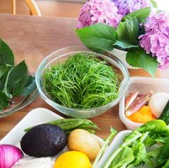2020.6野菜たっぷりおもてなしごはんの会食材