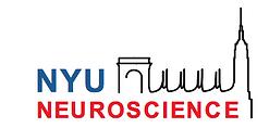NYU Neuroscience