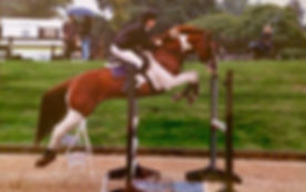 Dan W Jumping.jpg