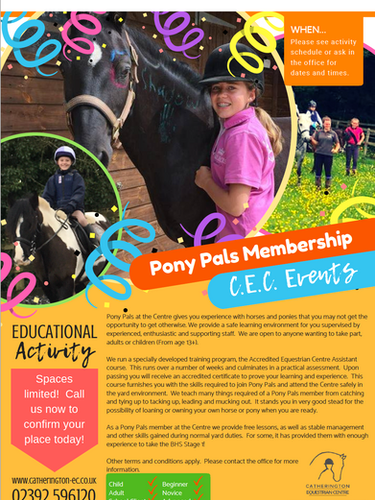 Pony Pals Info Sheet