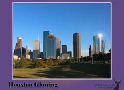 02_WilliamsonA_HoustonPro.jpg