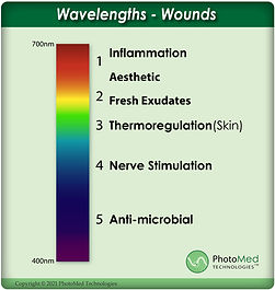 Wavelength-WOUNDS_2021_ AG.jpg