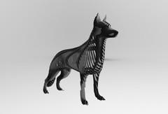 Rina German Shepherd, tailor-made ...