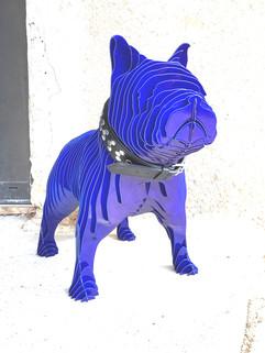 RINA DOG XL, BLUE CANDY