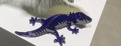 Rina Gecko, Bleu Candy...