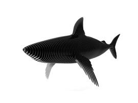 rina-shark-rendu_edited.jpg