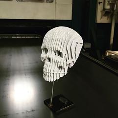 Rina Skull White, special edition.