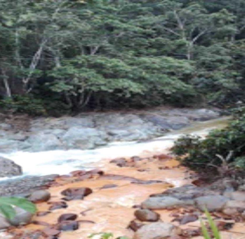 Quebrada El Panteón