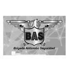 Seguridad BAS