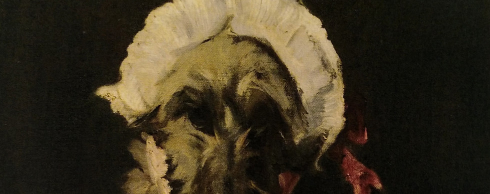 Retrato de cão com touca