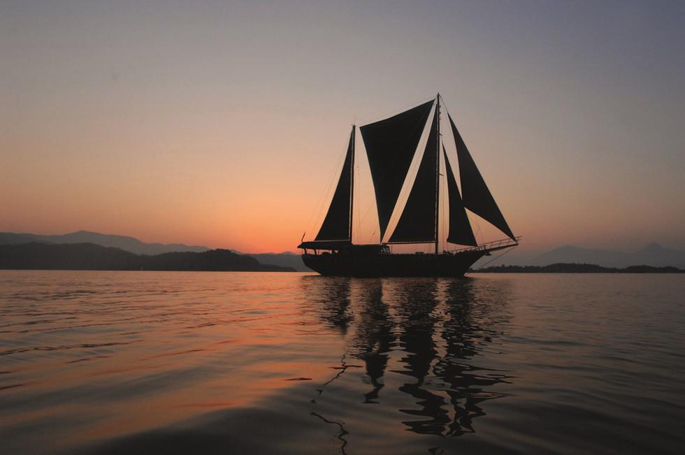 Beluga 5-sail.jpg
