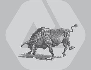 bull-2.png