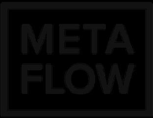 MetaFlow_4c-300x300.png