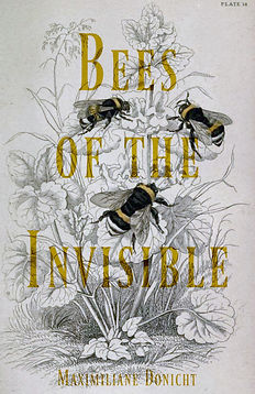 Bees of the Invisible poetry chapbook