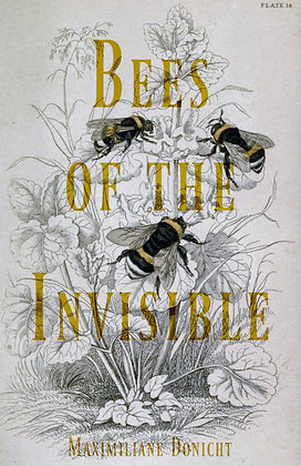 Bees of the Invisible