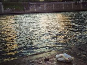 Water's Movement Breaking Sunlight