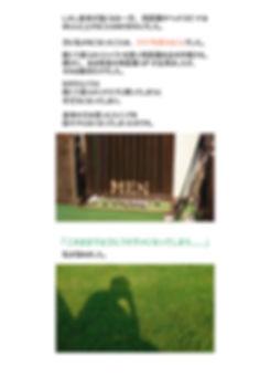 GRF-LP9b.jpg