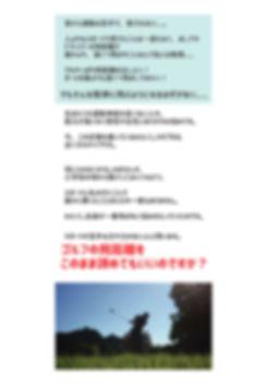 GRF-LP4.jpg
