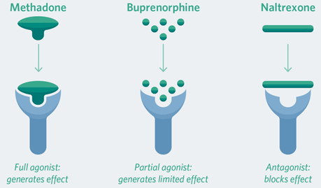 MedicationAssistedTreatment_Figure1.png