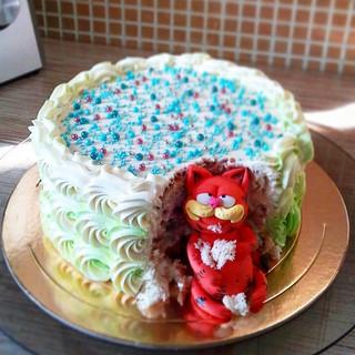 Торт на день рождения Гатчина 9