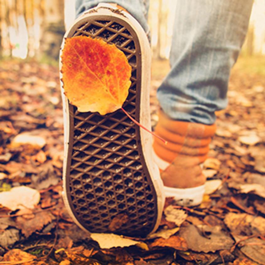 SPECIAL: Herfst Arrangement