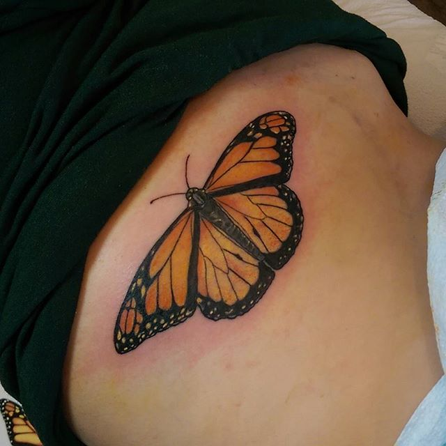 Bugs and stuff #redcrowstudio #monarchbutterfly #sandiegotattooer #sandiegotattoos #sandiegoart #ins